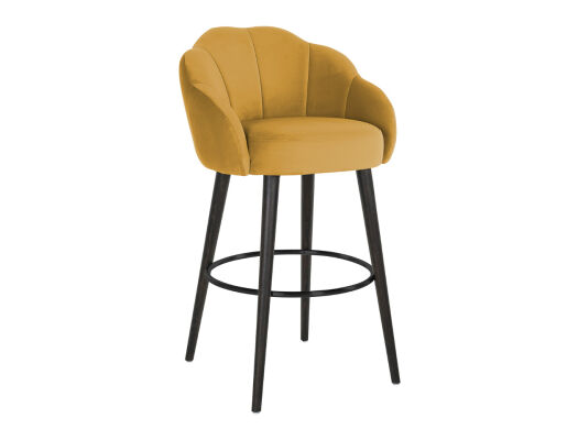 Barska stolica S4502 picture